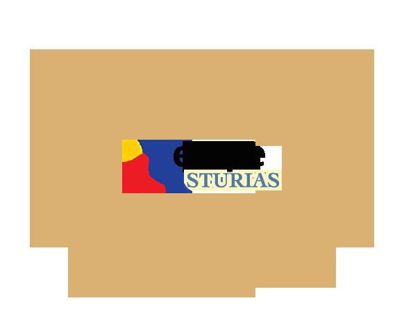 Premio Aedipe Asturias